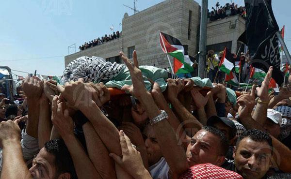 Miles de palestinos despiden a Mohammed Abu Khudair, el muchachito de 15 años secuestrado, torturado y quemado vivo por colonos israelíes.