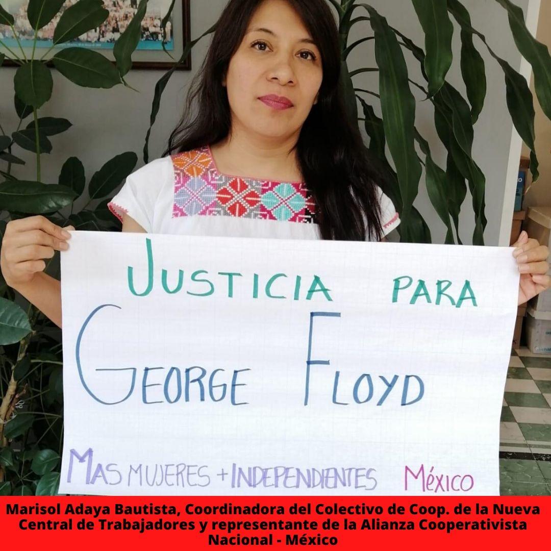 marisol adaya bautista coordinadora del colectivo de coop. de la nueva central de trabajadores y representante de la alianza cooperativista nacional - mxico