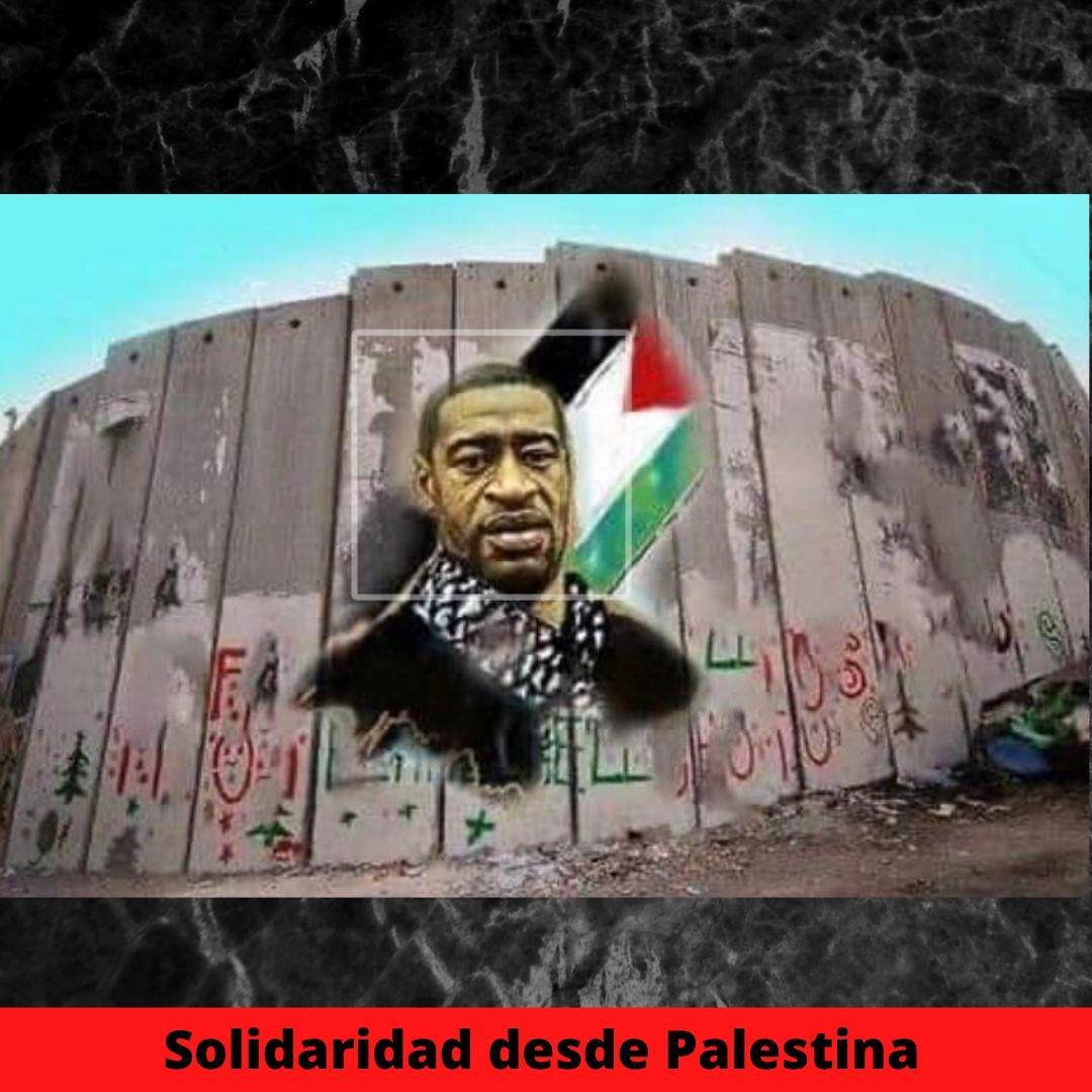 solidaridad desde palestina